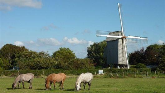 moulin de Coquelles-750